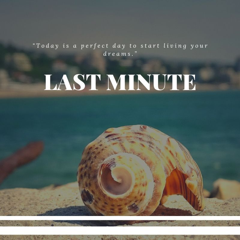 LAST MINUTE 01