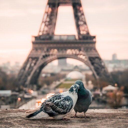 Pariz povoljna putovanja avionom